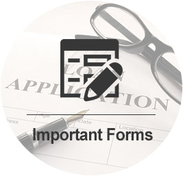 Loan Application quick link